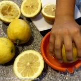 Sweet Lemon Iced Tea Squeezed