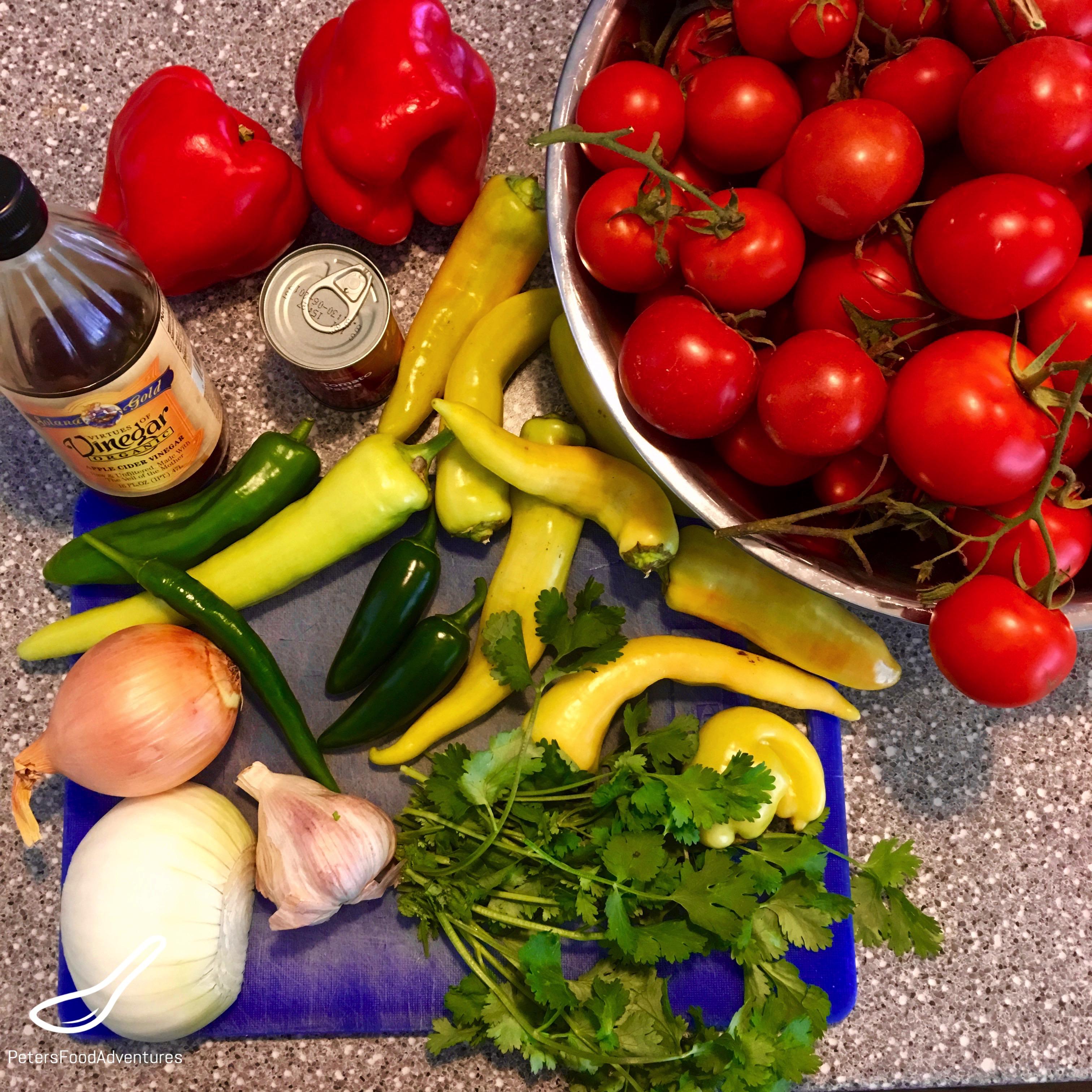 Tomato Salsa Recipe ingredients