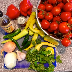 Tomato Salsa Recipe ingredients
